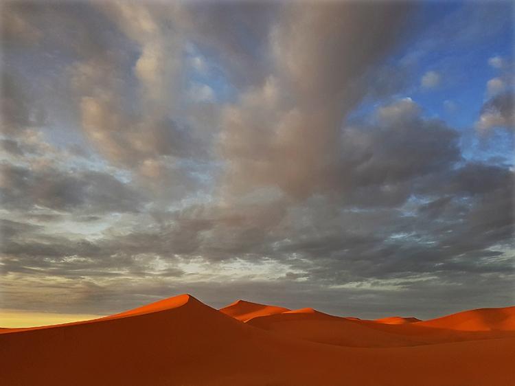 1 Sahara web