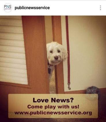 PNS love news